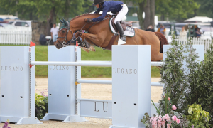 Ali Wolff, Casall, show jumping