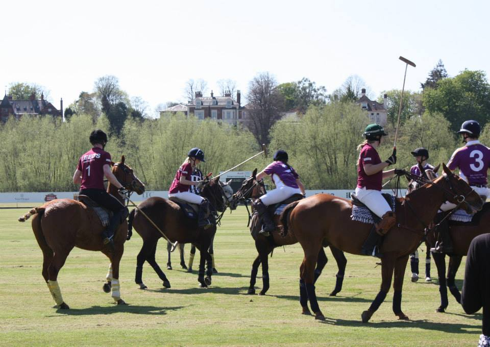 Gess Youl, University Polo