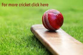 cricket bat and ball_graphic