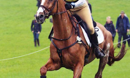 Izzy Taylor, eventing