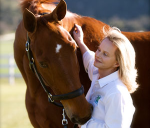 Debbie McDonald, Team USA Dressage