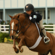 Taylor Cawley [COTH]-hunter-jumper-equitation-ponies-horses-equestrian-Chronicle-of-the-horse